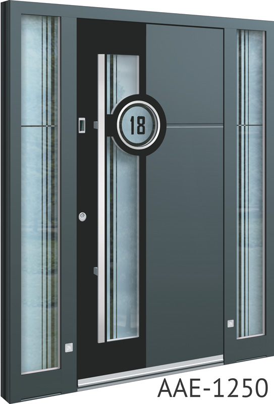 Black insert aluminium entrance doors