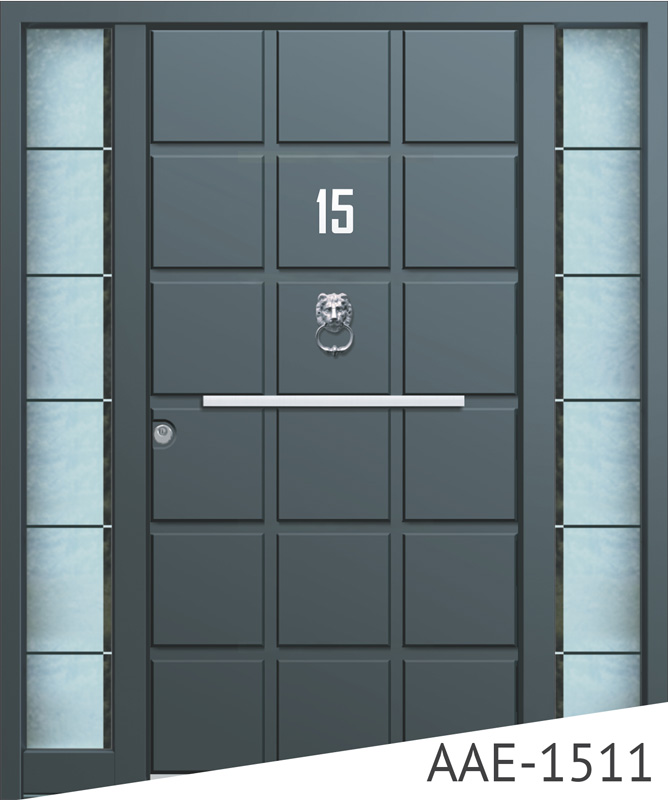 Dark grey entrance door